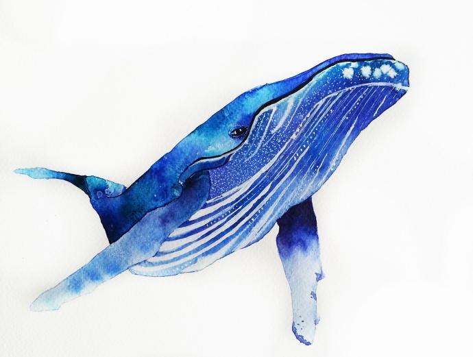 #WorldWatercolorGroup - Watercolor by Katiya Che of whale - #doodlewash