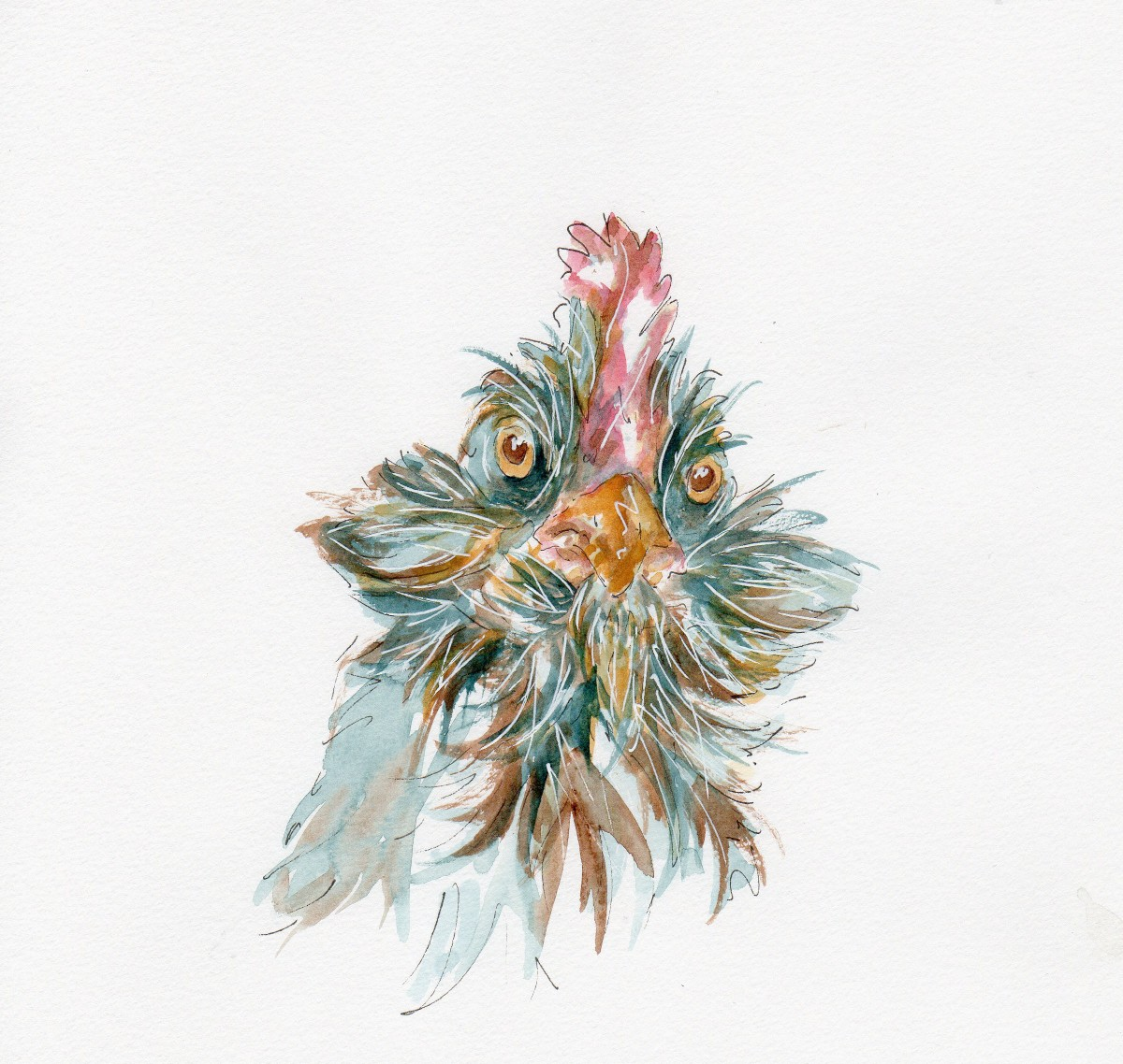 #WorldWatercolorGroup - Watercolor illustration by Patricia Mellett Brown - chicken - #doodlewash