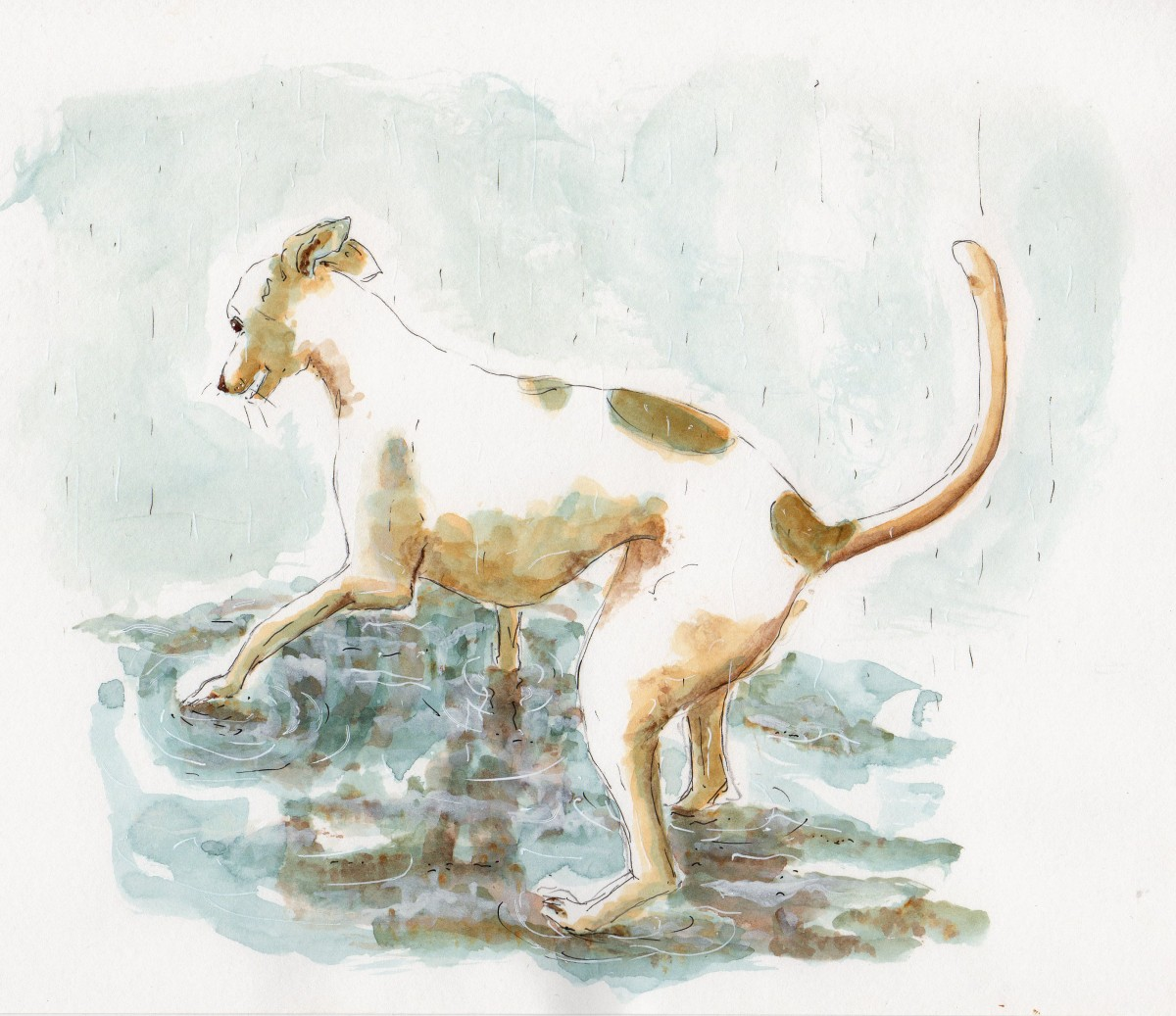 #WorldWatercolorGroup - Watercolor illustration by Patricia Mellett Brown - dog - #doodlewash