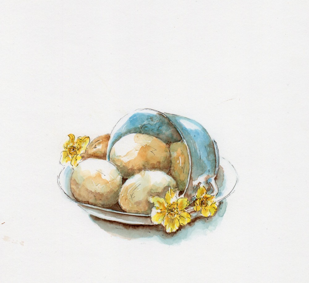 #WorldWatercolorGroup - Watercolor illustration by Patricia Mellett Brown - eggs - #doodlewash