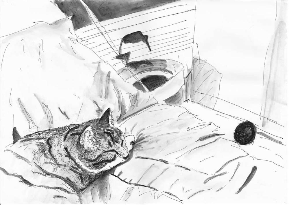 #WorldWatercolorGroup - Sketch by Tim Soekkha of cat on bed - #doodlewash
