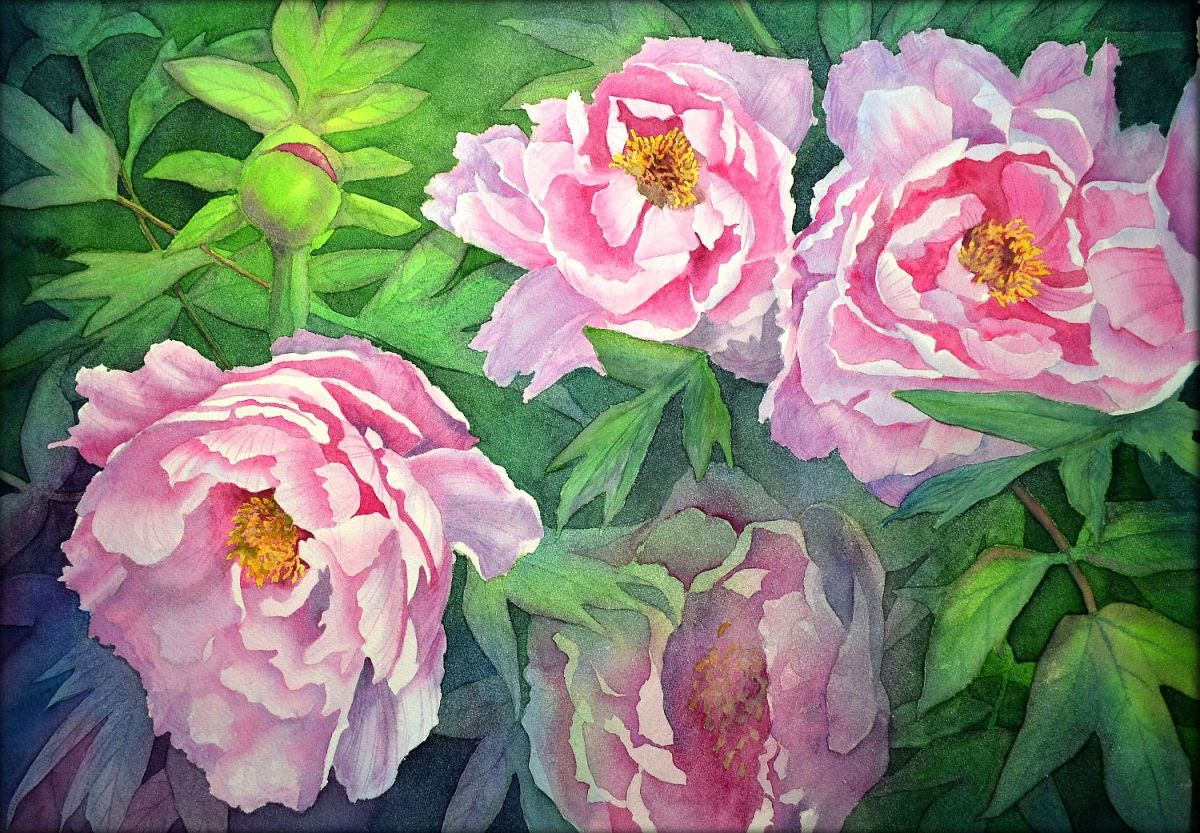 #WorldWatercolorGroup - Watercolor by Krzysztof Kowalski - Peonies - #doodlewash