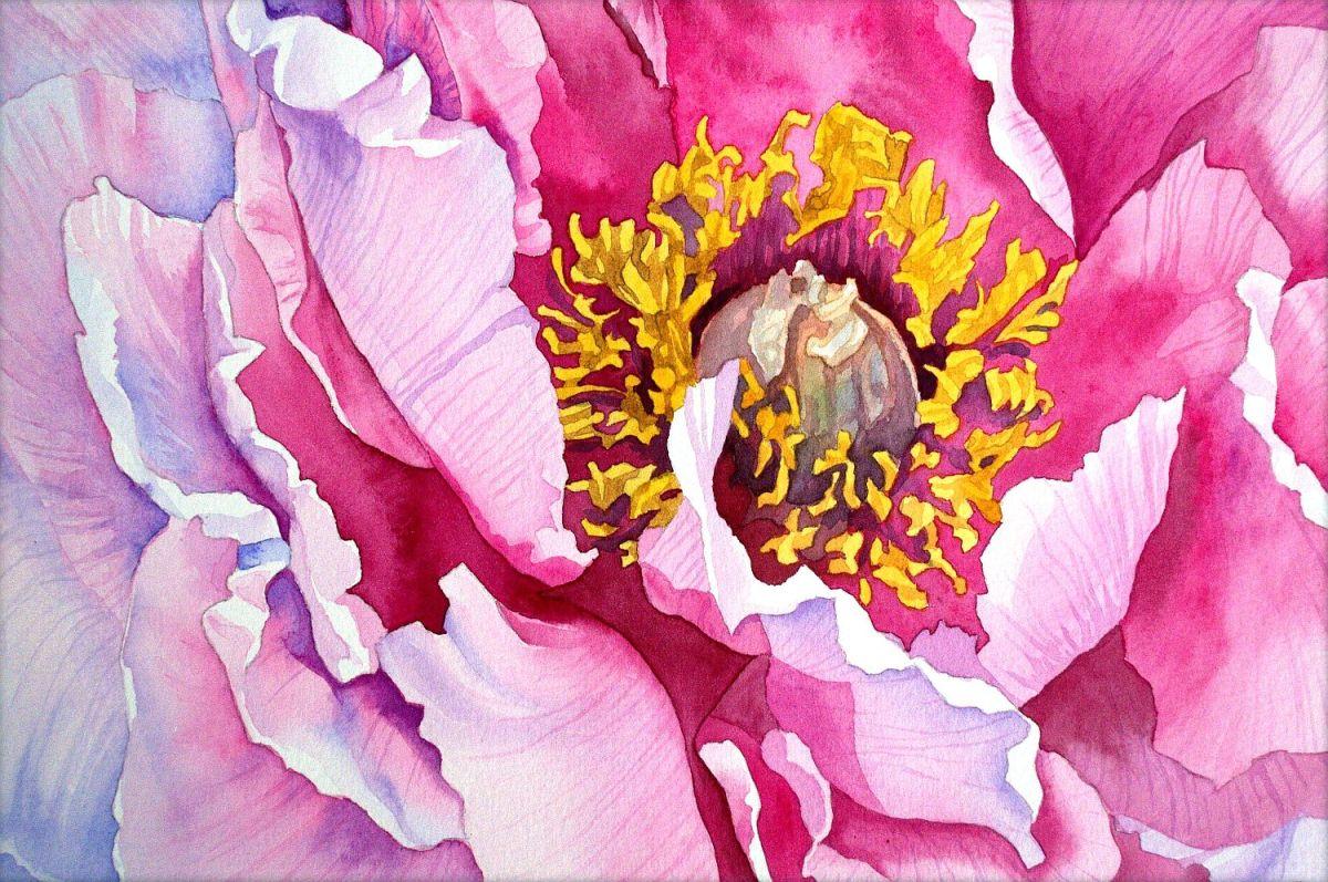 #WorldWatercolorGroup - Watercolor by Krzysztof Kowalski - Peony - #doodlewash