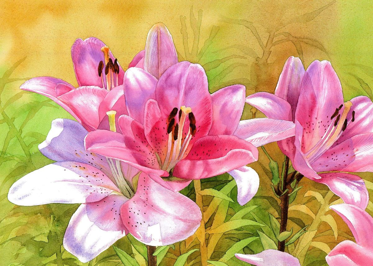 #WorldWatercolorGroup - Watercolor by Krzysztof Kowalski - Pink Lilies - #doodlewash