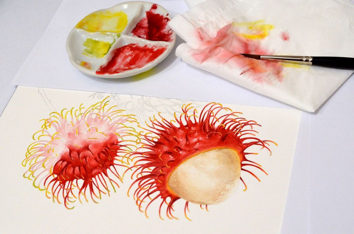 #WorldWatercolorGroup - Watercolor by Krzysztof Kowalski - Rambutans Wips - #doodlewash
