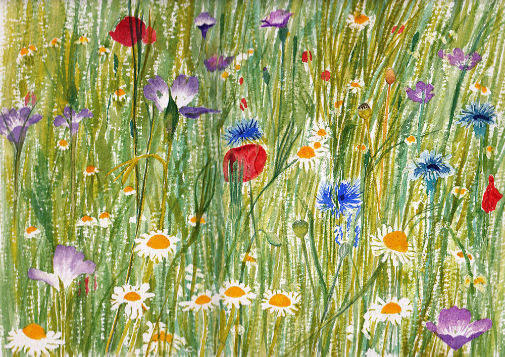 #WorldWatercolorGroup - Watercolor by Jan Purves - Wildflower meadow - #doodlewash